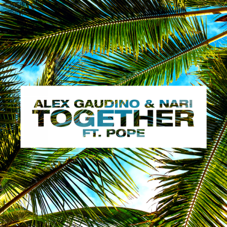 Alex Gaudino & Nari ft. Pope - Together